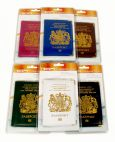 BoyzToys RY495 Gone Travelling Metal Corner Passport Holder 6 Assorted Colours