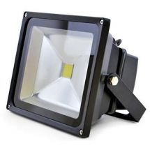 Lloytron L8513 Long Life 30w LED Floodlight w/ Screws & Rawl Plugs - Black - New